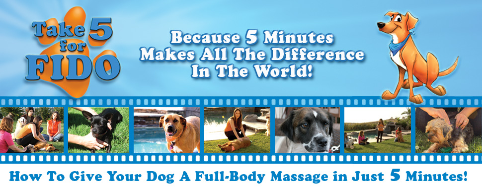 Take 5 for FIDO Canine/Dog Massage DVD. Because 5 Minutes Makes All The Difference In The World. How To Give Your Dog A Full-Body Massage In Just 5 Minutes